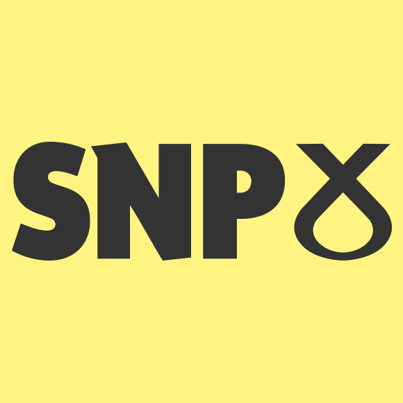 Scottish National Party Manifesto 2019