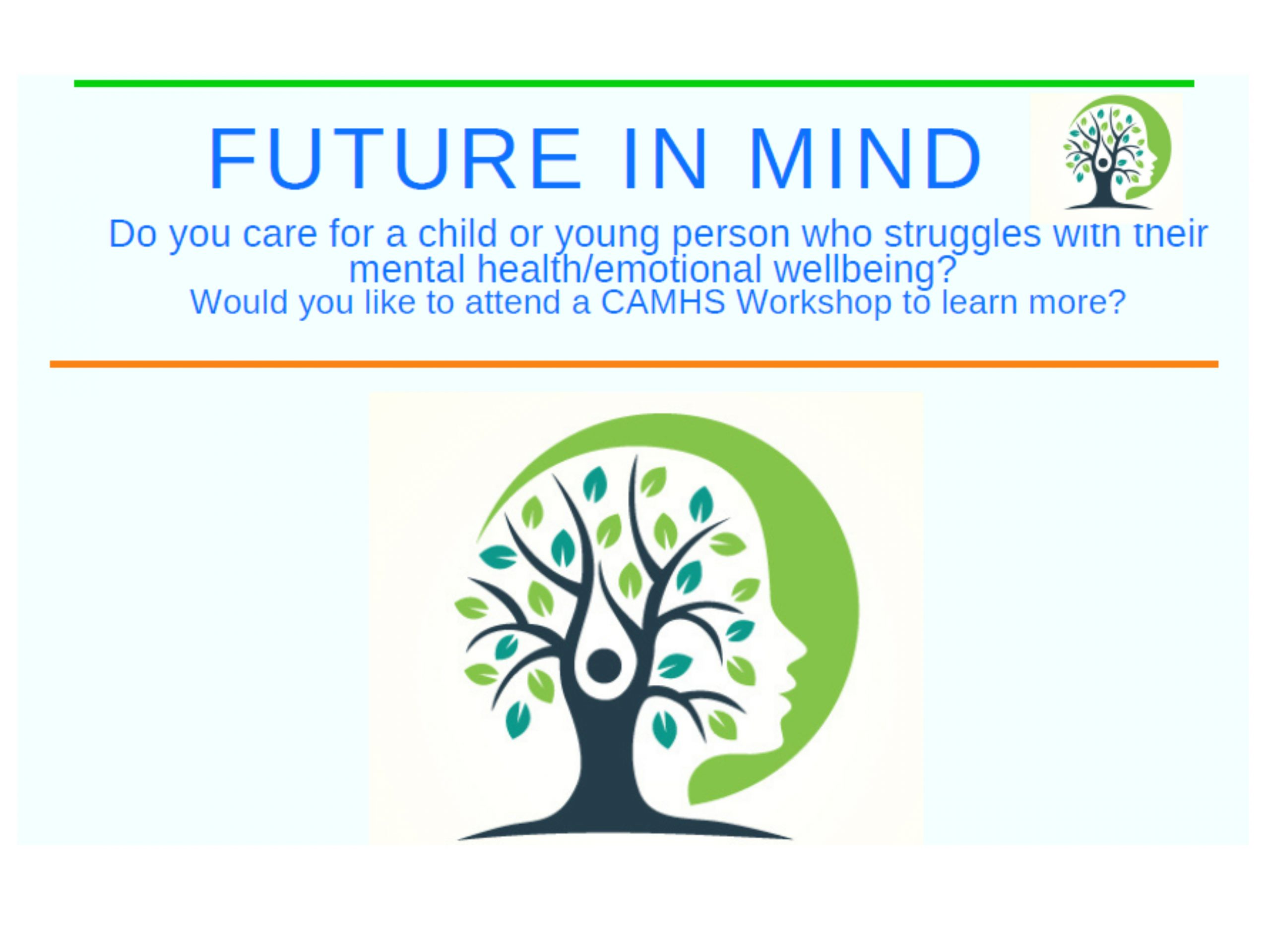 HPCN Future in Mind Parent Carer Sessions
